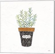 Fine Herbs IX Fine-Art Print