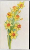 Yellow Daffodils Fine-Art Print