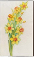 Yellow Daffodils Fine-Art Print