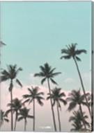 Palms in the City Fine-Art Print