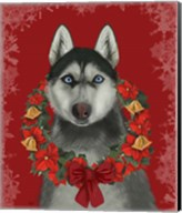 Husky and Poinsettia Wreath Fine-Art Print
