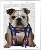 English Bulldog with Scarf Fine-Art Print