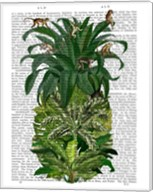 Pineapple, Monkeys Fine-Art Print