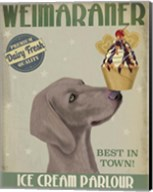 Weimaraner Ice Cream Fine-Art Print