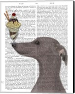 Greyhound, Grey, Ice Cream Fine-Art Print