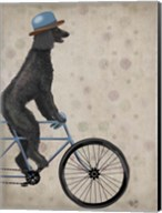 Poodle on Bicycle, Black Fine-Art Print