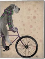 Schnauzer on Bicycle, Grey Fine-Art Print