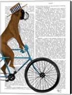 Boxer on Bicycle Fine-Art Print