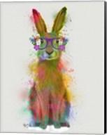 Rainbow Splash Rabbit 1 Fine-Art Print
