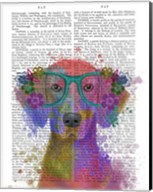 Rainbow Splash Weimaraner, Portrait Fine-Art Print