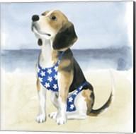 Hot Dog II Fine-Art Print