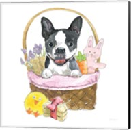 Easter Pups VII Fine-Art Print