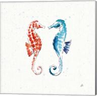 Maritime IX Fine-Art Print