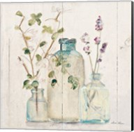 Blossoms on Birch V Fine-Art Print