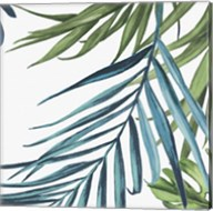 Palm Leaves III Fine-Art Print