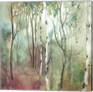 Birch in the Fog I Fine-Art Print