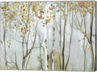 Birch in the Fog II Fine-Art Print