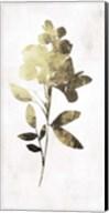 Gold Botanical I Fine-Art Print