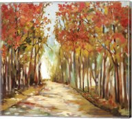 Sunny Path Fine-Art Print