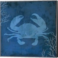 Navy Sea Crab Fine-Art Print