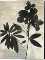 Inky Floral II Fine-Art Print