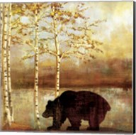 Great Bear Fine-Art Print