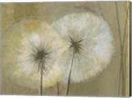 Whisper I Fine-Art Print