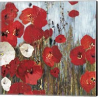 Passion Poppies I Fine-Art Print