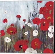 Passion Poppies II Fine-Art Print