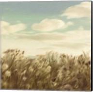 Dandelion Field Fine-Art Print