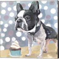 Pug Birthday Fine-Art Print