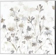 Garden Shadows IV on White Fine-Art Print