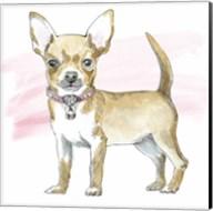 Glamour Pups VII Fine-Art Print