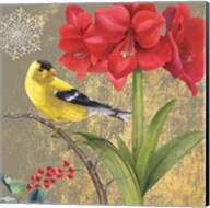 Winter Birds Goldfinch Collage Fine-Art Print
