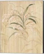 Bamboo Blossoms Fine-Art Print