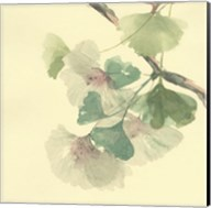 Gingko Leaves II Fine-Art Print