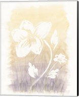 Floral Silhouette II Fine-Art Print