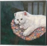 Kitten on Chair Fine-Art Print