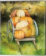 Pumpkin Harvest Fine-Art Print