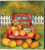 Pumpkins for Sale Fine-Art Print