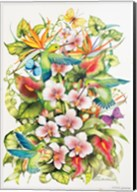 Orchid Splendor with Birds Fine-Art Print