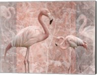 Pink Flamingo Birds Fine-Art Print