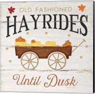 Hayrides Fine-Art Print