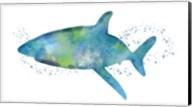 Watercolor Shark I Fine-Art Print