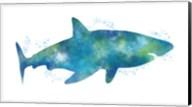 Watercolor Shark III Fine-Art Print