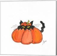 Jack O Cat Fine-Art Print