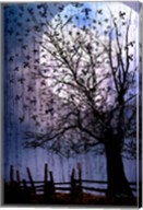 Bird Swarm Fine-Art Print