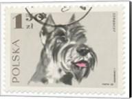 Poland Stamp I on White Fine-Art Print