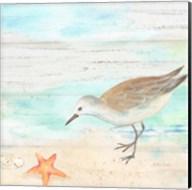 Sandpiper Beach II Fine-Art Print