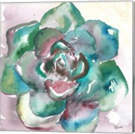 Succulent Watercolor IV Fine-Art Print